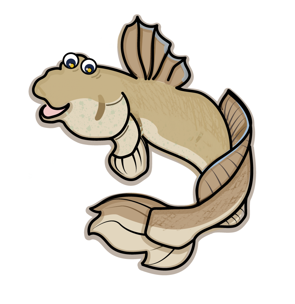 This image has an empty alt attribute; its file name is Giant-mudskipper-V401-992x1024.png