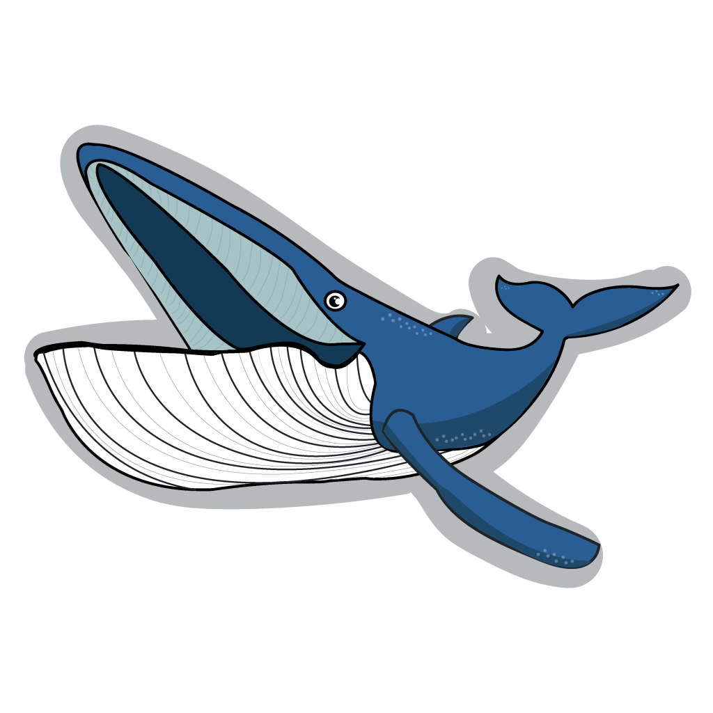 This image has an empty alt attribute; its file name is whale01-1024x1024.png